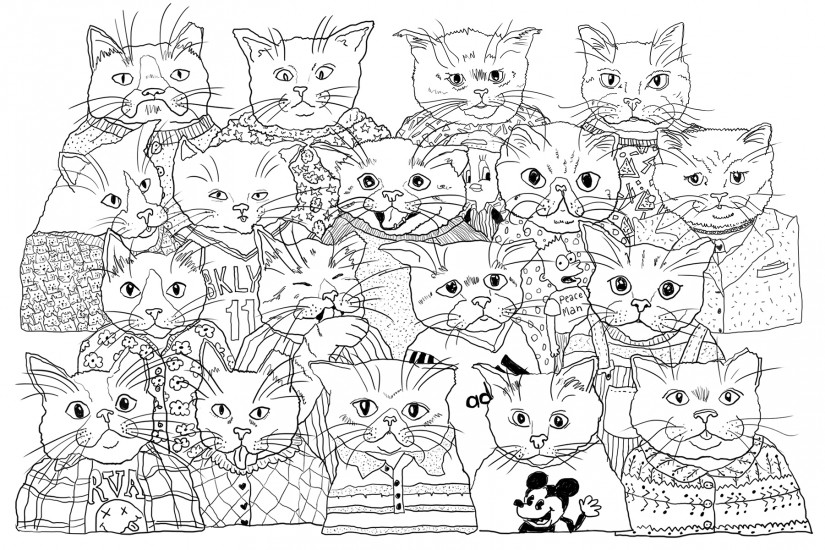 cat drawing for Stray cat Social Club